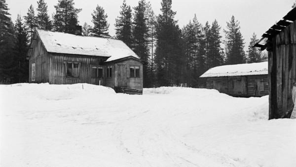Lumisessa maisemassa puutalo ja kaksi ulkorakennusta, taustalla metsää
