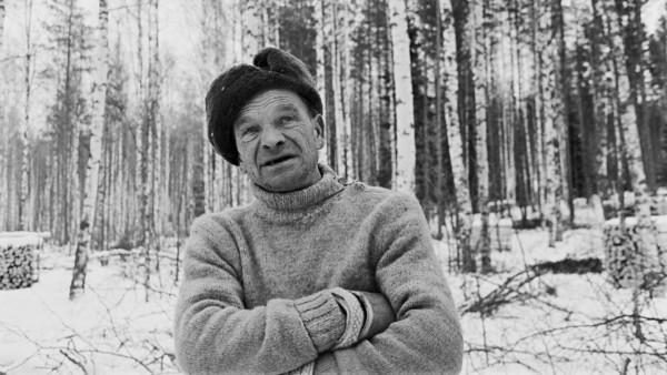 Vanha mies villapaidassa kädet puuskassa, taustalla luminen metsä ja halkopinoja