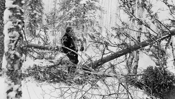 Lumisessa metsässä mies kantamassa männyn runkoa toisesta päästä, rungon toista päätä ei näy. Taustalla lumisia puita