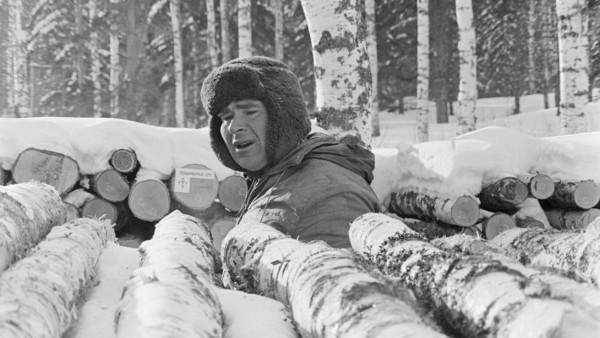 Mies talvivaatteissa lumisten runkopinojen välissä, taustalla metsää