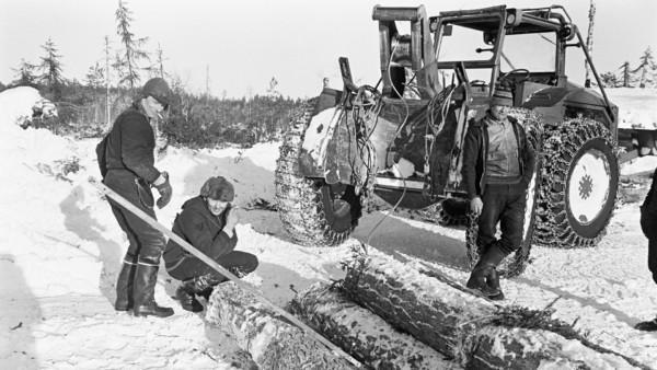 Kolme miestä lumisessa metsässä tupakoimassa traktorin luona, etualalla runkopino, taustalla metsää