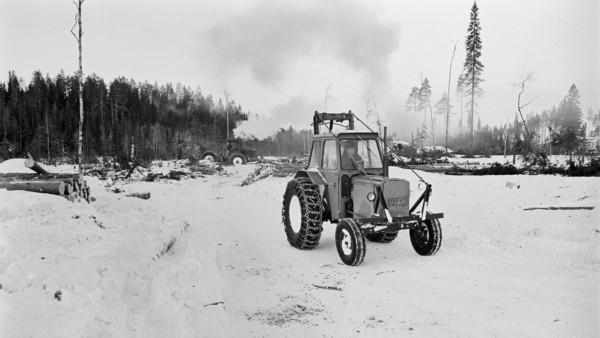 Mies ajamassa traktoria lumisella metsäaukealla, taustalla kaadettuja puunrunkoja, toinen traktori ja metsää