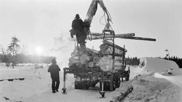 Lumisella metsäaukealla mies nostamassa nosturilla puun runkoja traktorin kärryyn, toinen mies seisoo nosturin vieressä, taustalla lumisia runkopinoja ja metsää