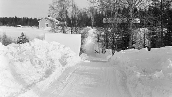 Aurattu tie ja korkeat lumipientareet, taustalla puutaloja ja metsää