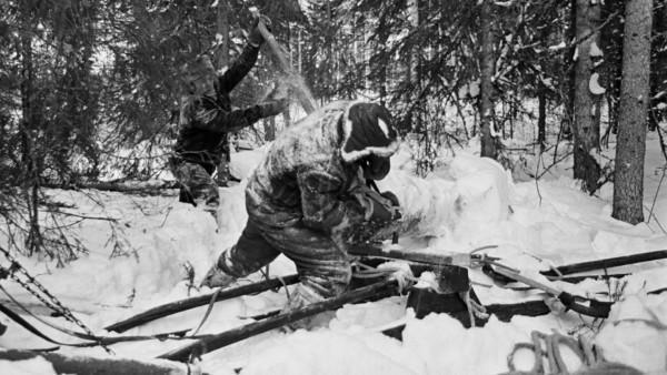 Kaksi miestä talvivaatteissa siirtämässä lumista puunrunkoa reen päälle lumisessa metsässä, edestäpäin kuvattuna
