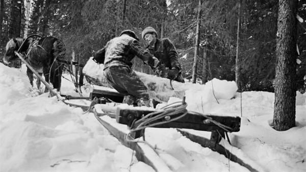 Kaksi miestä talvivaatteissa siirtämässä lumista puunrunkoa hevosen vetämän reen päälle lumisessa metsässä, takaa kuvattuna