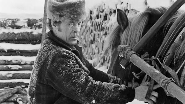 Vanha mies talvivaatteissa pitelemässä hevosta, taustalla lumisia puunrunkoja pinossa