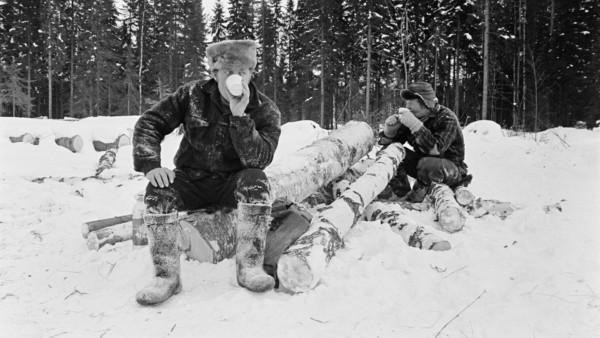 Lumisella metsäaukealla kaksi miestä kahvitauolla koivunrunkojen päällä istumassa