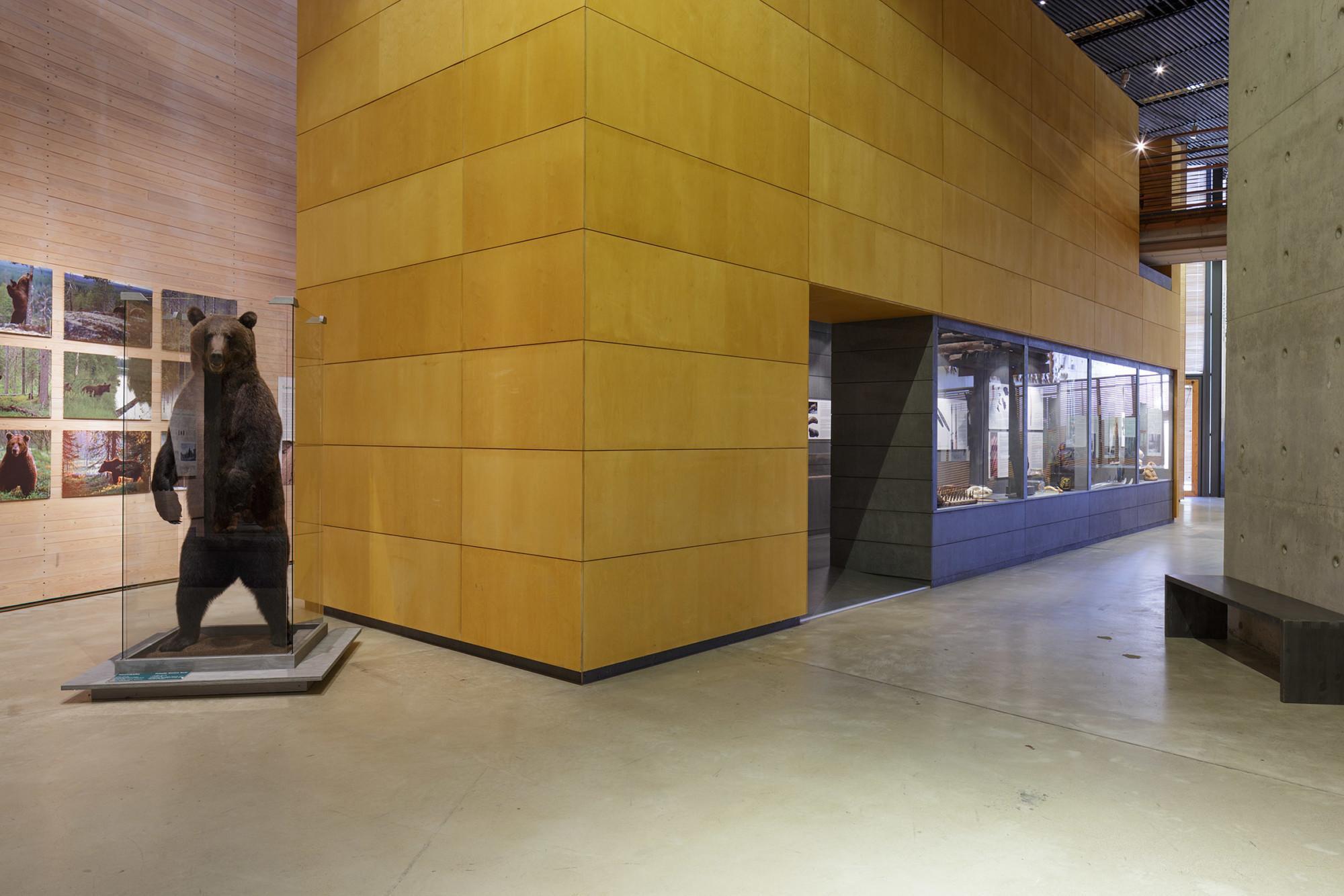 Suorakaiteen muotoinen rakenne näyttelytilassa. Etualalla jaloilleen noussut, täytetty karhu.
