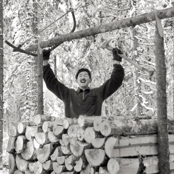 Vanha valokuva miehestä, joka tuulettaa kädet ylhäällä puupinon takana. Toisessa kädessä miehellä on pokasaha, ja hänen ilmeensä on iloinen.