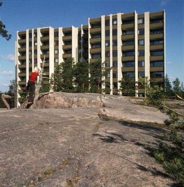 Poika kiipeää kelopuussa kalliolla, taustalla kerrostalo ja mäntyjä.