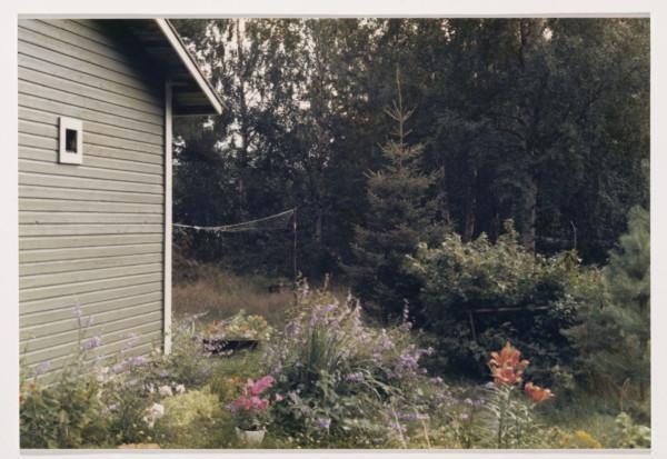 Kuvan sivussa pieni kaistale mökin seinää, etualalla kukkaistutuksia, taustalla metsää.
